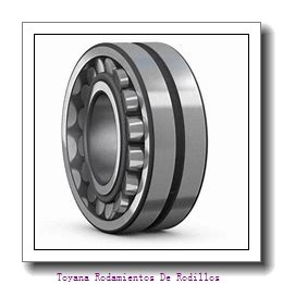 Toyana NF3034 Rodamientos De Rodillos