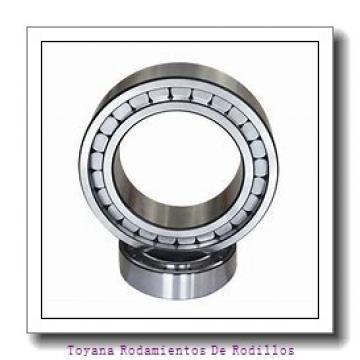 Toyana N418 Rodamientos De Rodillos