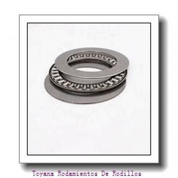 Toyana N228 Rodamientos De Rodillos