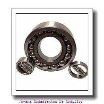 Toyana NJ419 Rodamientos De Rodillos