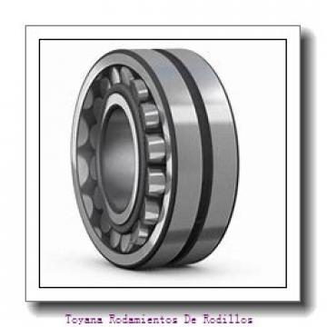 Toyana NF407 Rodamientos De Rodillos