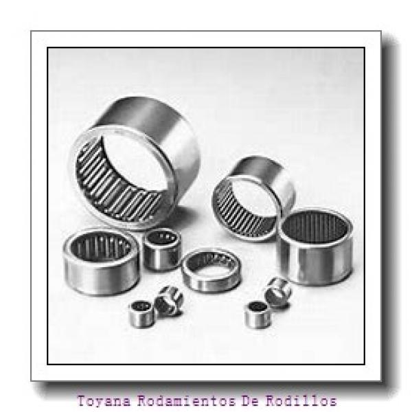 Toyana NF2230 E Rodamientos De Rodillos #1 image